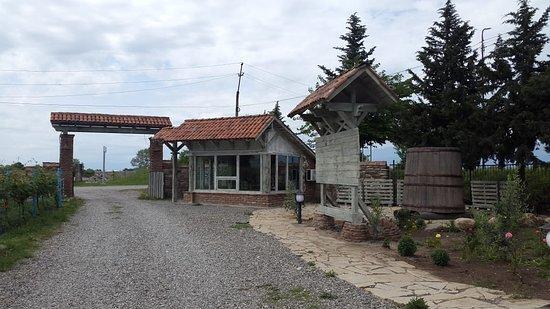 Kakheti Region, Georgia: Все по предварительному заказу, выпить и закусить, а так экскурсия короткая и пару сортов вина.