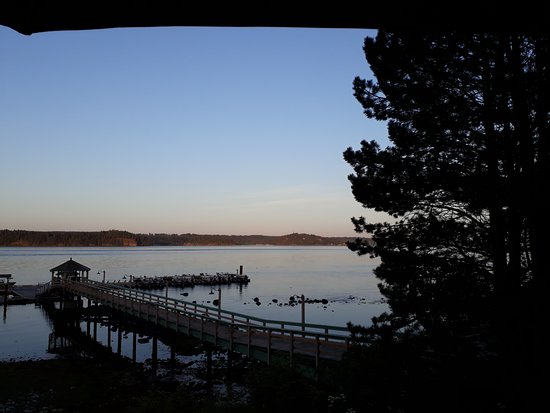 Painter's Lodge: The dock in the evening glow.