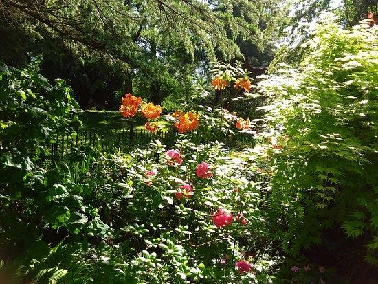 Botanic Gardens: Botanic garden