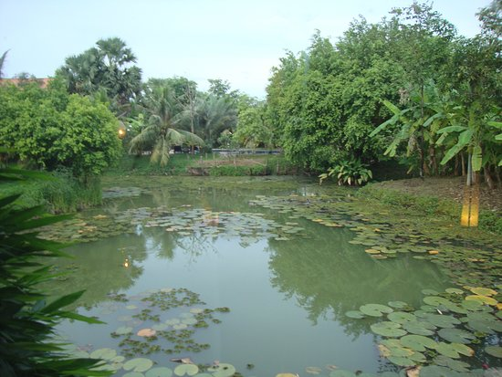 Battambang Resort: Lake Room view