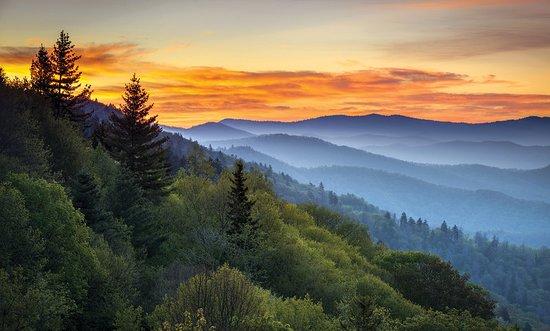 Wyndham Smoky Mountains: Other