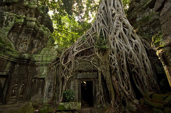Angkor Wat Private Day Tours