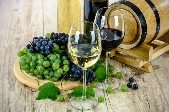 Wine Tasting Experience Madrid