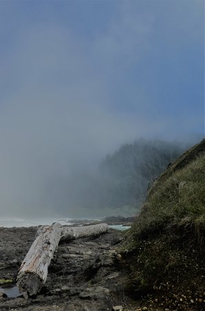 Cape Perpetua Scenic Area: Cape Perpetua