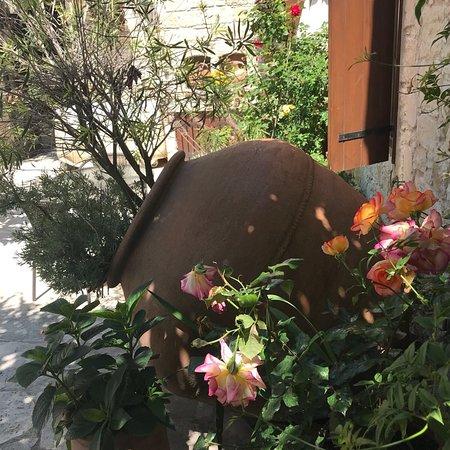 Arsos, Kıbrıs: photo2.jpg
