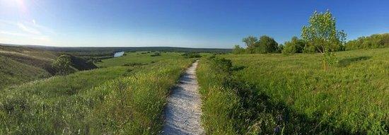 Divnogorye, Rússia: Тропа в заповеднике.