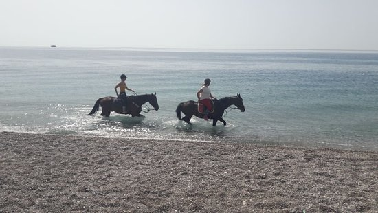 Horse Riding To The Beach