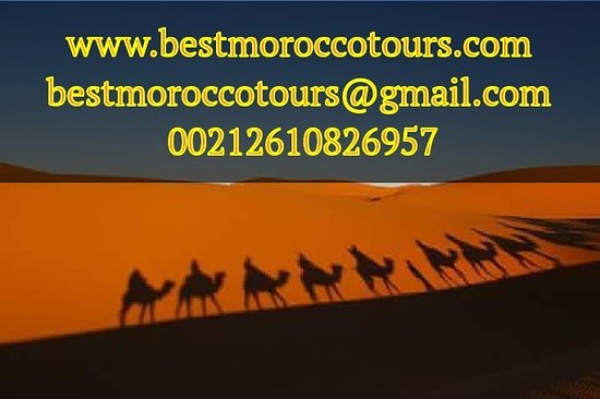 ‪Best Morocco Tours‬