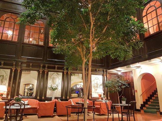 Hotel Konig Von Ungarn: Lobby bar with living trees Stairs in mesonette 307 at Koenig von Ungarn, placescases.com