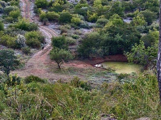 Ohrigstad, South Africa: 20180508_064946_large.jpg