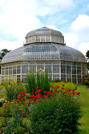 National Botanic Gardens (Dublin)   2018 All You Need To Know Before You Go  (with Photos)   TripAdvisor