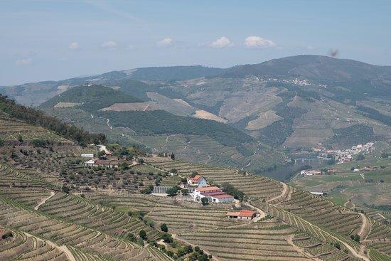 Douro Exclusive : Douro valley