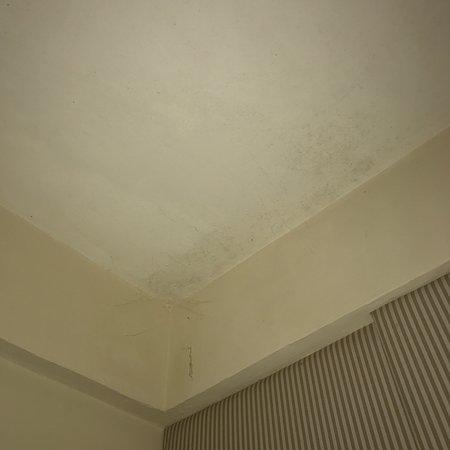 โรงแรมเซงกีกิ บีช ภาพถ่าย