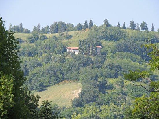 Freelandia la Valle dei Caprioli: Aussicht vom Bungalow