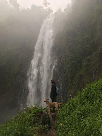 Bilde fra Twanga Touring