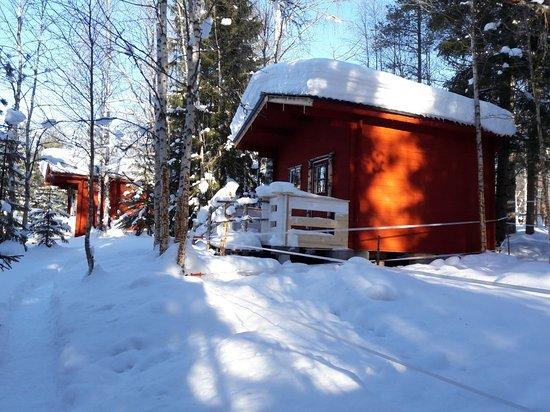 Lycksele, Sweden: 20180302_105953_large.jpg