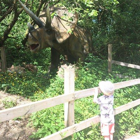 Combe Martin Wildlife and Dinosaur Park: photo0.jpg