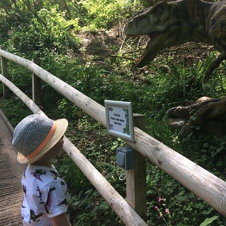 Combe Martin Wildlife and Dinosaur Park: photo1.jpg
