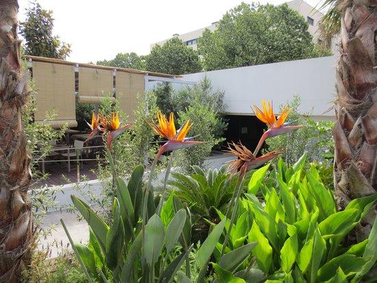 Mooi en moderne aangelegde tuin picture of aqua hotel silhouette