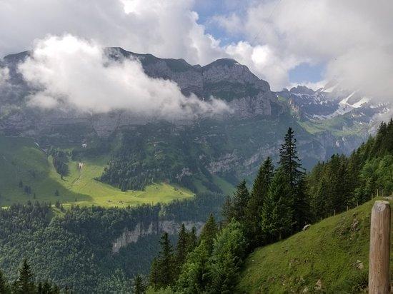 Weissbad, Switzerland: 20180609_042148_large.jpg