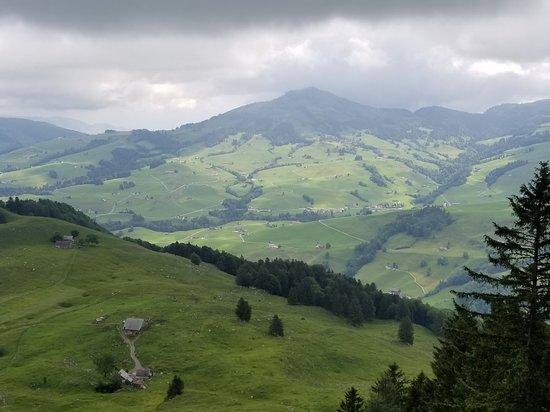 Weissbad, Switzerland: 20180609_044624_large.jpg