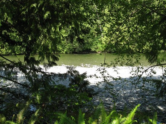 Sayward, Canada: White River in the summer.