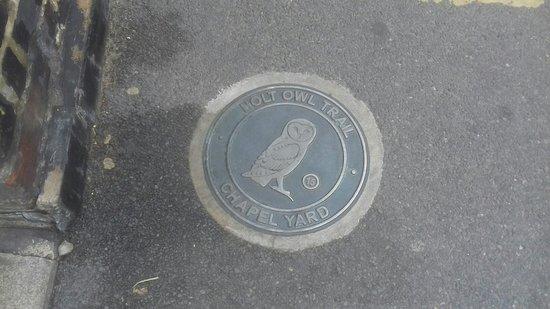 Holt Owl Trail 사진