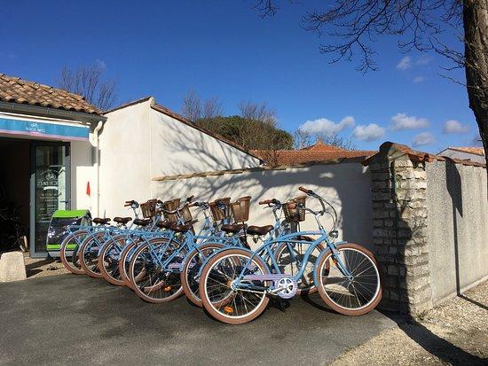 Beach Bikes照片