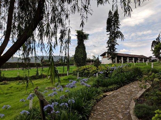 Sumpango, Guatemala: IMG_20180602_132130_large.jpg