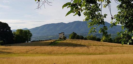 Il Torchio Di Villa Bellardi Recensioni