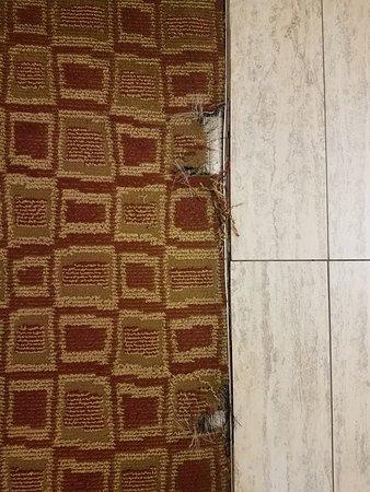 Yazoo City, MS: Needs New Carpet.
