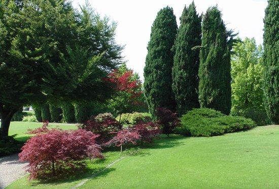 Bellissimo angolo colorato foto di parco giardino sigurtà
