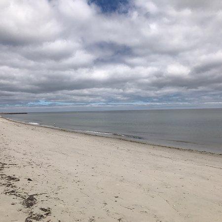 Seagull Beach: photo1.jpg