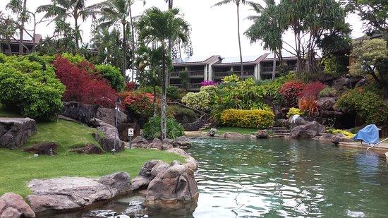 Hanalei Bay Resort: Main pool