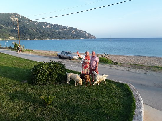 Hotel Costas Golden Beach: Don't forget to pack a bag of Waggs for the family dogs!