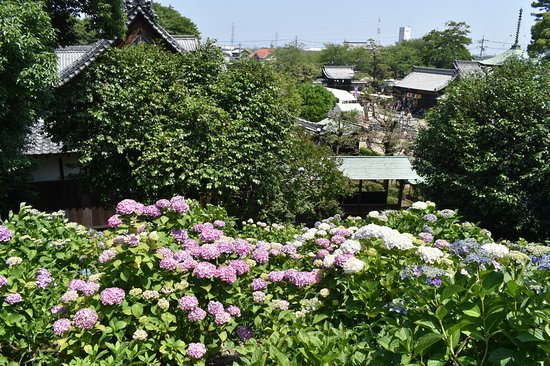 Otsuka Tomb