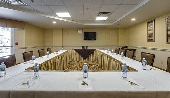 Monte Carlo Inn & Suites Downtown Markham: Meeting room