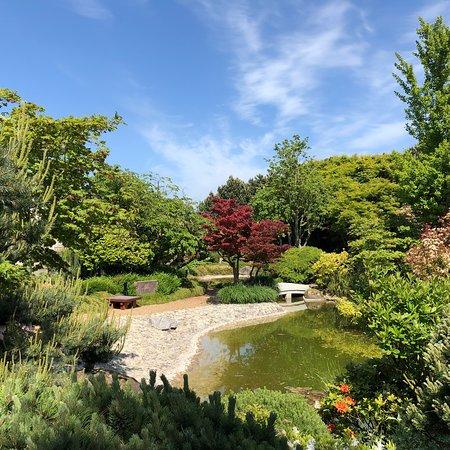 jardin japonais le havre 2019 ce qu 39 il faut savoir pour votre visite tripadvisor. Black Bedroom Furniture Sets. Home Design Ideas