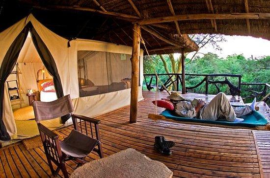 Safari de 3jours dans la réserve du...
