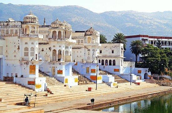 Opplev Kort tur Jaipur - Pushkar 02...