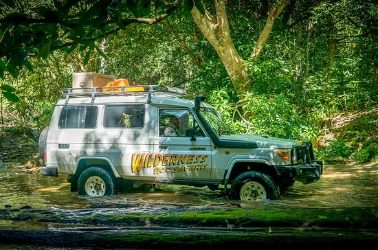Full Day Rainforest 4WD Tour from...