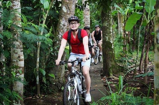 Aventuras no Bali Hai Bike Tour