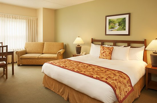 Roanoke, Virginia Occidental: Guest room