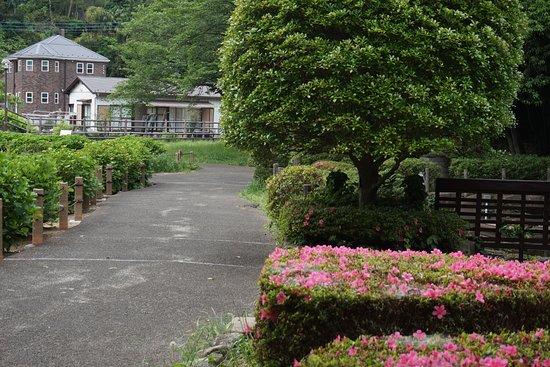 Serizawa Park