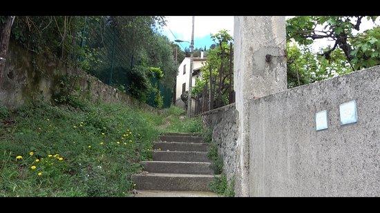 Фотография Fort Mont-Alban