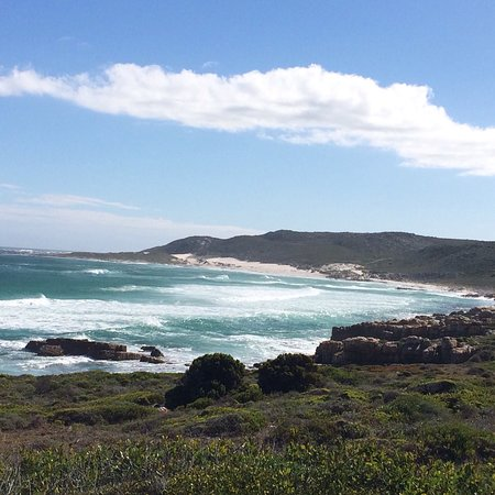 Cape Peninsula National Park, South Africa: photo6.jpg