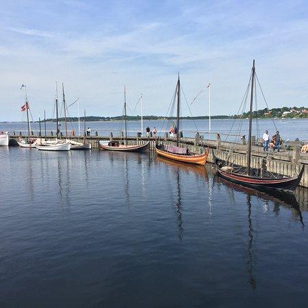 Μουσείο Πλοίων των Βίκινγκ: Vikingeskibsmuseet