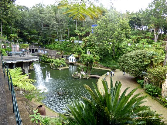 The lake in the Tropical gardens Monte - Picture of Monte Palace ...