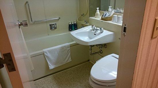 Keikyu EX Hotel Shinagawa: 古めかしいバスルーム