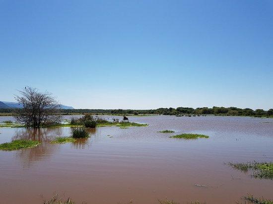 Lake Manyara National Park, แทนซาเนีย: 20180610_111343_large.jpg